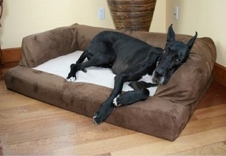 Sofa Bed Dogs  xxl Orthopedic Sofa Style Dog Beds for Large and Extra Large Dogs